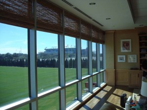Tampa UV Protective Window Film